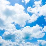 Splendid Skies